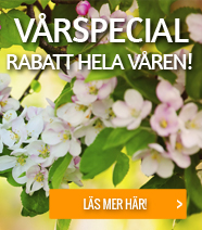 Vårspecial!