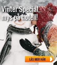 Vinter Special
